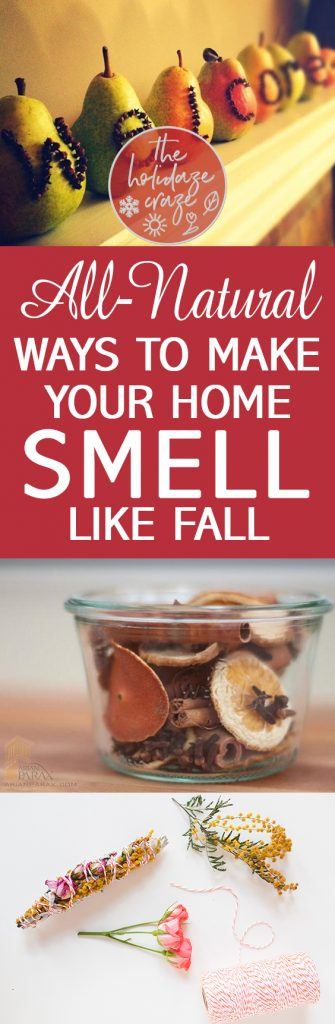All-Natural Ways to Make Your Home Smell Like Fall | How to Make Your Home Smell Like Fall, Fall Home, Fall Home Hacks, Smell Hacks for the Home, Smell Hacks