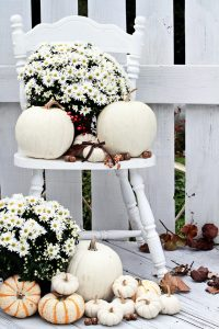 Pumpkin Porch | Pumpkin Porch Decor Ideas | DIY Fall Porch Decor | Fall Decorations | Decorate Your Porch for Fall